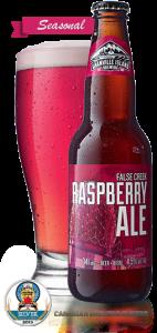hero-raspberry-silver2013